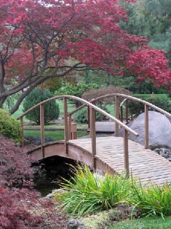 Fall In The Schedel Gardens Picture Of Schedel Gardens And Arboretum Elmore Tripadvisor