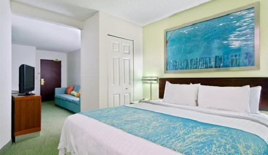 SpringHill Suites Asheville : King Suite Sleeping Area