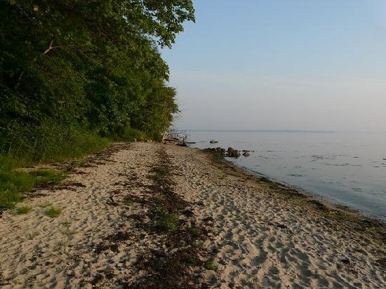 Langballigau: Einsame kleine Strände an der Förde