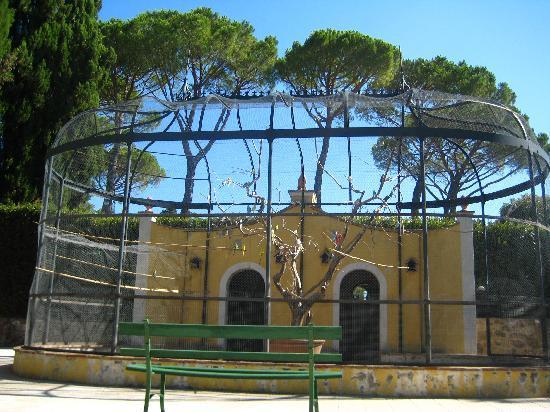 Villa Bellaria : Bird Sanctuary