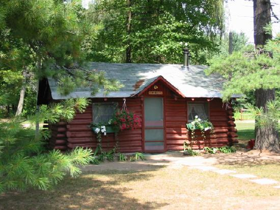 Interlochen, MI: Pine Log Cabin