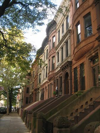 Easyliving-harlem: Easyliving Harlem Haus