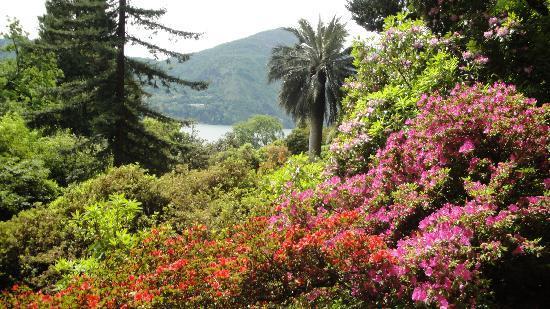 Villa Carlotta: Garden 1