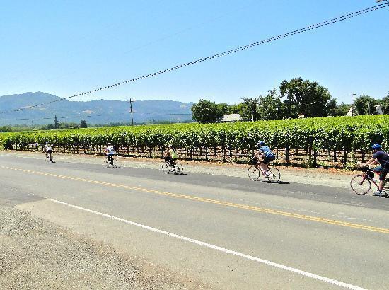 Sonoma Bike Rentals Tours