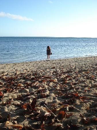 Coral Coast, Fiji: Walking on the beach