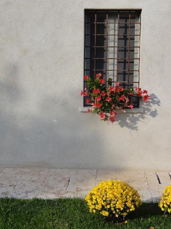 Agriturismo Delo Relais: Window to the main house.