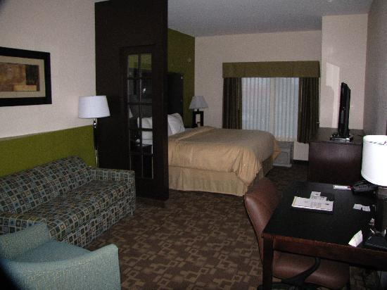 Comfort Suites Lake City: Our suite