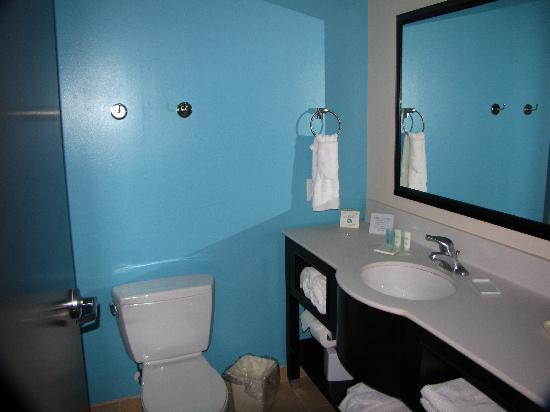 Comfort Suites Lake City: Bathroom