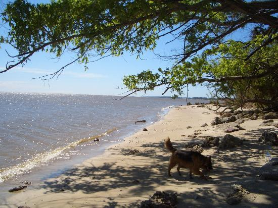 Posada de Campo Gondwana: playa arenisca