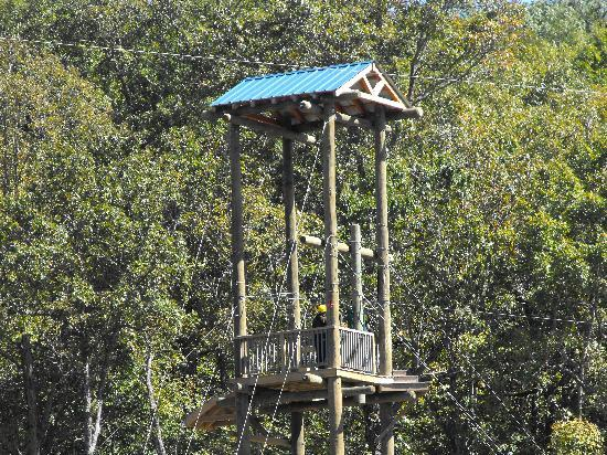 Branson Zipline and Canopy Tours: An Adventure of a Lifetime