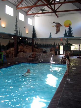 Stoney Creek Hotel And Conference Center Des Moines Pool