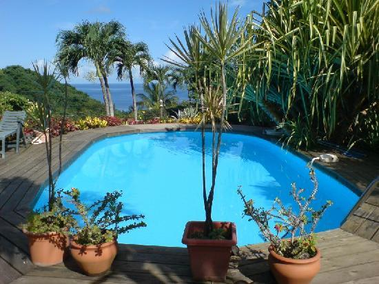 La Koumbala: Swimming pool