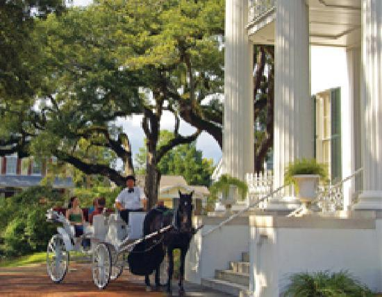 Natchez, Миссисипи: Carriage tour at Stanton Hall