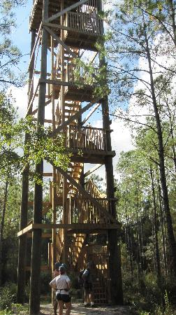 Milton, FL: Zipline in Florida at Adventures Unlimited