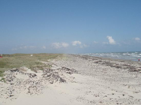 Padre Island National Seashore: No resorts, no condos, just dunes and beach