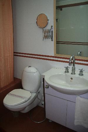 Hotel Amar: Bathroom shot 2