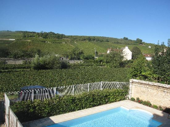 Le Clos du Colombier : you could almost pick the grapes from your room