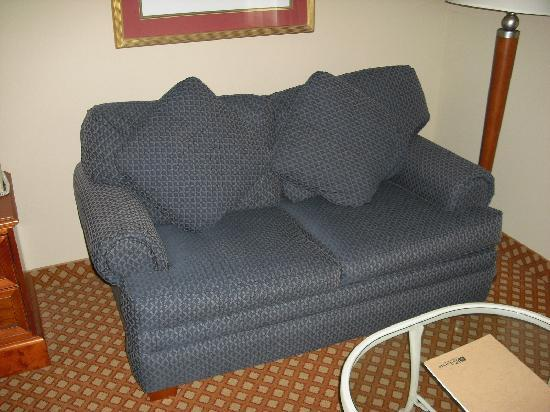 Hilton Garden Inn Cincinnati Northeast: Couch in king room