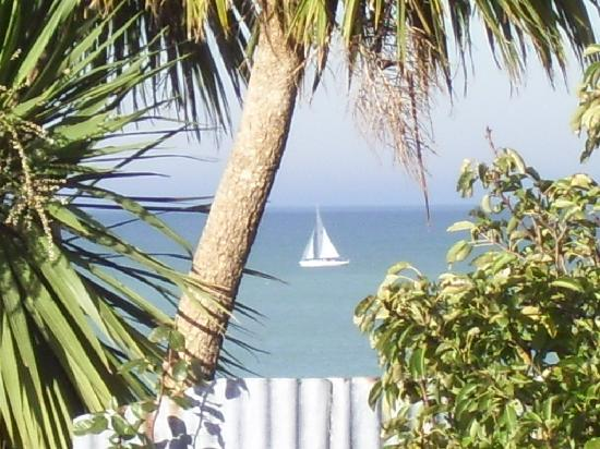 Blueberry Cottage Bed & Breakfast: Views of the Ocean