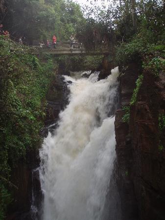 Puerto Iguazu, Arjantin: Salto Alvar