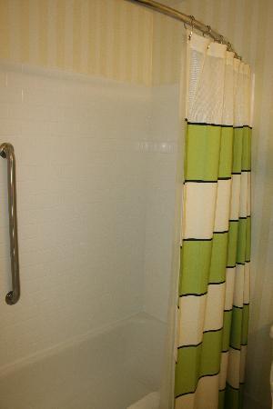 Fairfield Inn & Suites Toledo Maumee: Shower/Tub