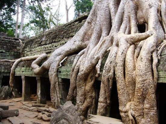 Siem Reap, Cambodia: Taprom Temple