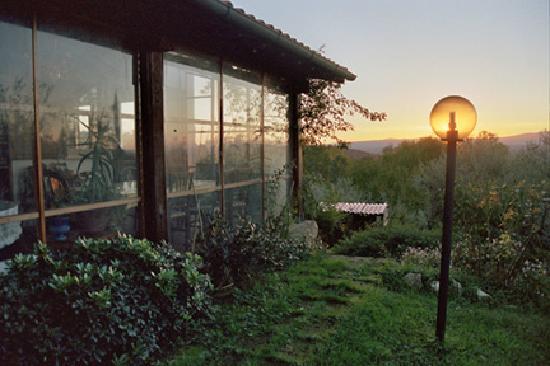 Agriturismo Surya : Sunset outside the solarium