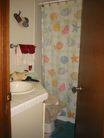 Blue Horizons Bed and Breakfast : bathroom