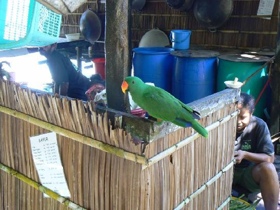 Kri Eco Resort: Jacob