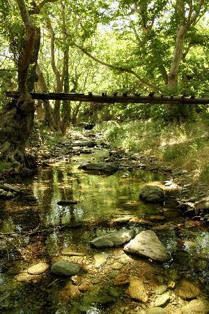 Onar: AHLA RIVER
