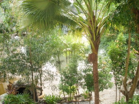 Langkawi Boutique Resort: trees around the swimming pool