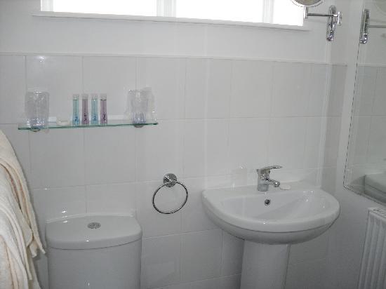 130 Corve Street B&B: Bathroom