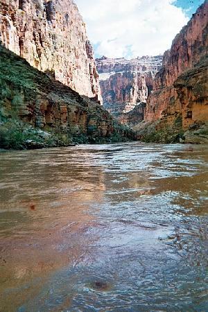 Parque Nacional del Gran Cañón, AZ: a view of the canyon