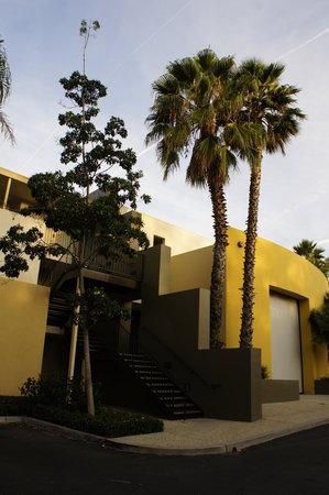 Lemon Tree Inn 사진
