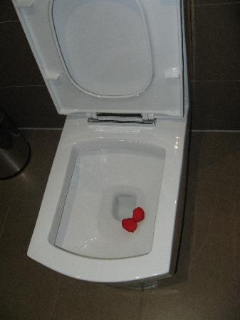 Christian's Hotel : Rose petals in square loo