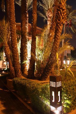 Bert's Marrakech et ses palmiers éclairés la nuit