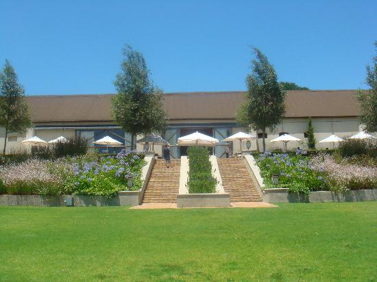 4 Cape Town Day Tours : Looking towards Ernie Els Winery restaurant