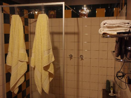 Snug Cove Bed and Breakfast: awesome shower