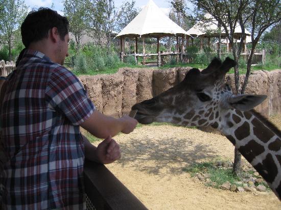 Dallas Zoo -