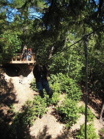 Sonoma Canopy Tours: riding the zipline