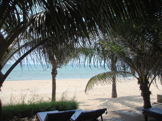 Suoi Tien Mui Ne Resort : The view outside our bungalow