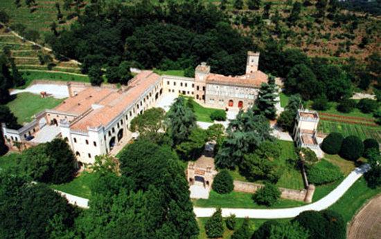 Castello di Lispida: Air view