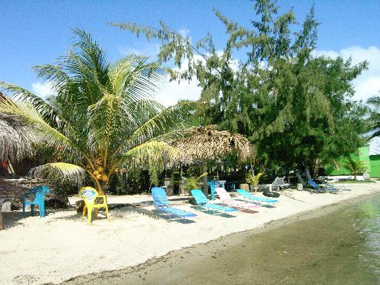Flowers Bay Guesthouse: Arthuros beach