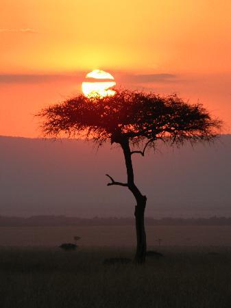 Mara Intrepids Luxury Tented Camp : Sunset on Maasai Mara - we will return!