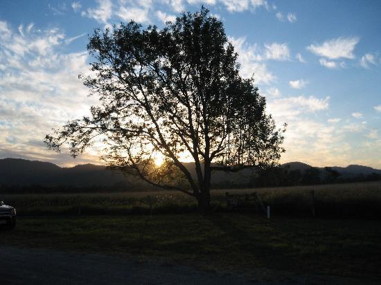 Koorawatha Homestead Motel : Sunset from our room