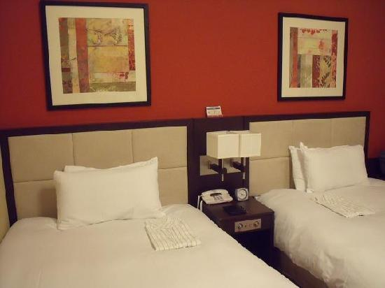 Hotel Sunroute Plaza Shinjuku: Spacious twin-bedded room