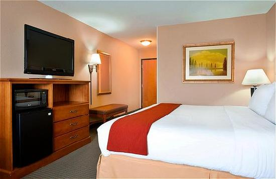 Holiday Inn Express Hotel & Suites Lake Zurich-Barrington : Standard Room