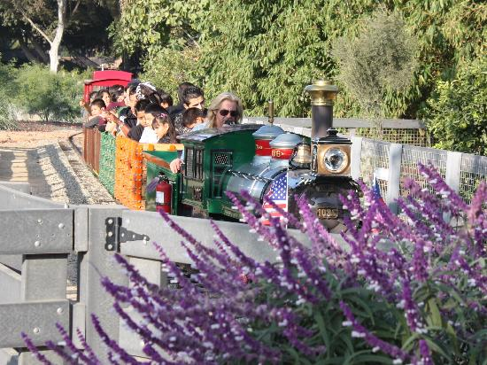 Santa Ana, CA: Zoofari Express Train Ride