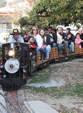Train Rides at Wilson Park