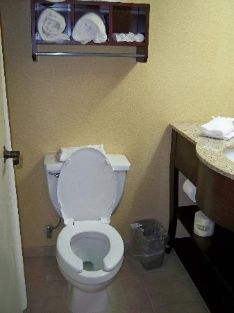 Hampton Inn Sumter : nice updated bathroom